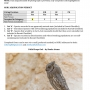 Microsoft Word - Pallid_Scops_Owl_7th_07_11_2013_at_Jal Al Zor_by_Bouke Atema